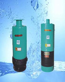 WQX内流式污水污物潜水电泵